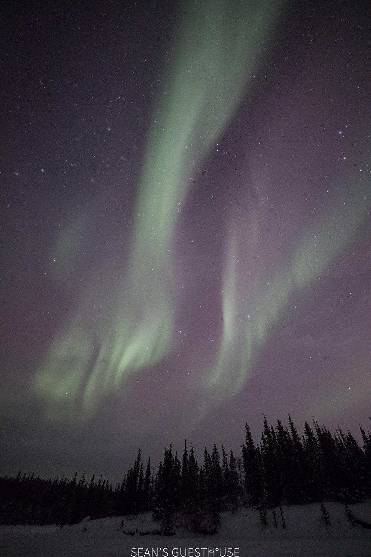 Yellowknife Aurora Hunting Tour - Sean Norman - 2.jpg
