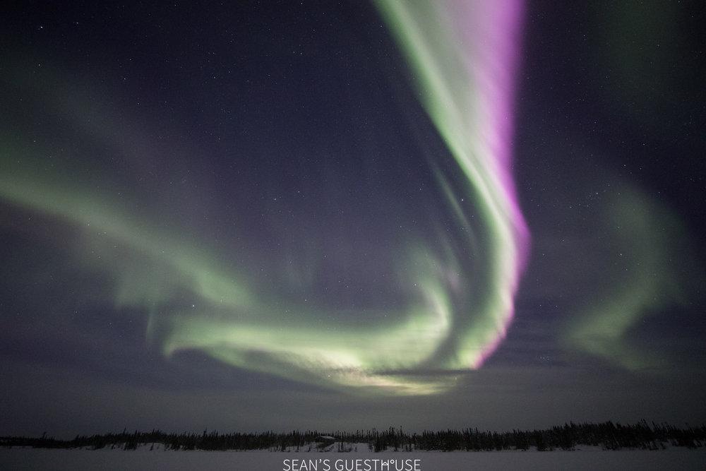 Yellowknife Aurora Tour - Aurora Guide Sean Norman - 5.jpg