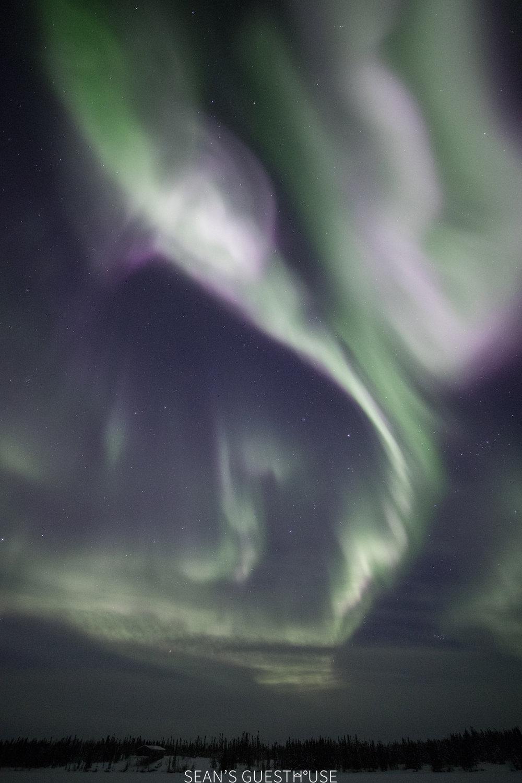 Yellowknife Aurora Tour - Aurora Guide Sean Norman - 6.jpg