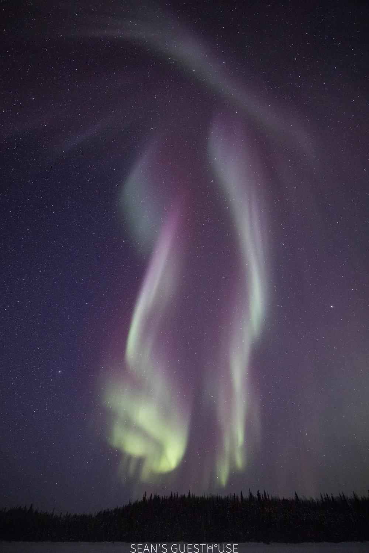Sean Norman Aurora Guide - Yellowknife Tours - 7.jpg