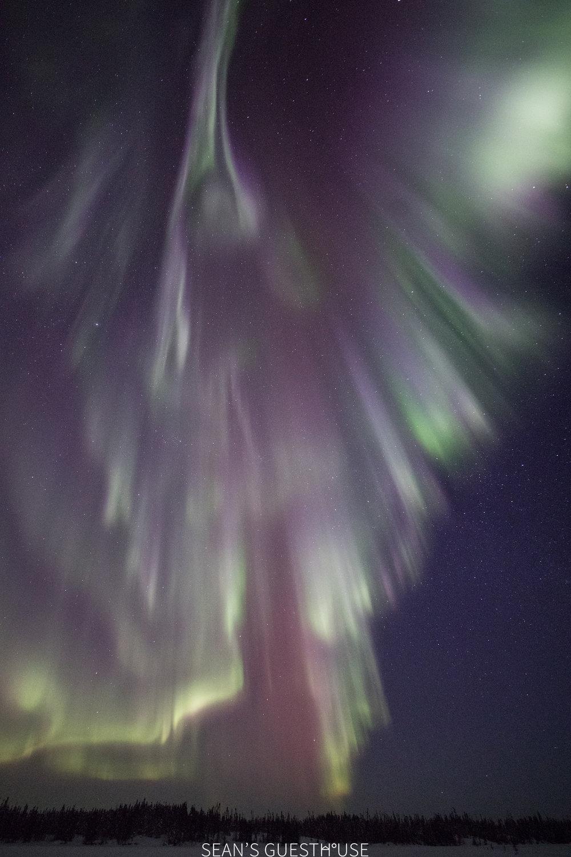 Yellowknife Aurora Hunting Guide - Sean Norman Canada - 3.jpg