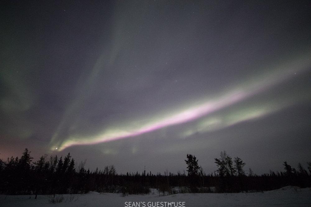 Yellowknife Aurora Tour - Aurora Guide - 1.jpg