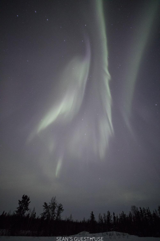 Yellowknife Aurora Tour - Aurora Guide - 2.jpg