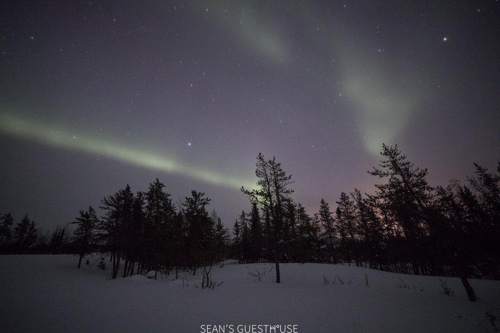 Yellowknife Aurora Tour - Aurora Guide - 3.jpg