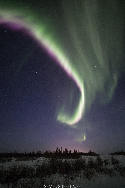 Aurora Chasing Tour - Yellowknife Guide - 5.jpg