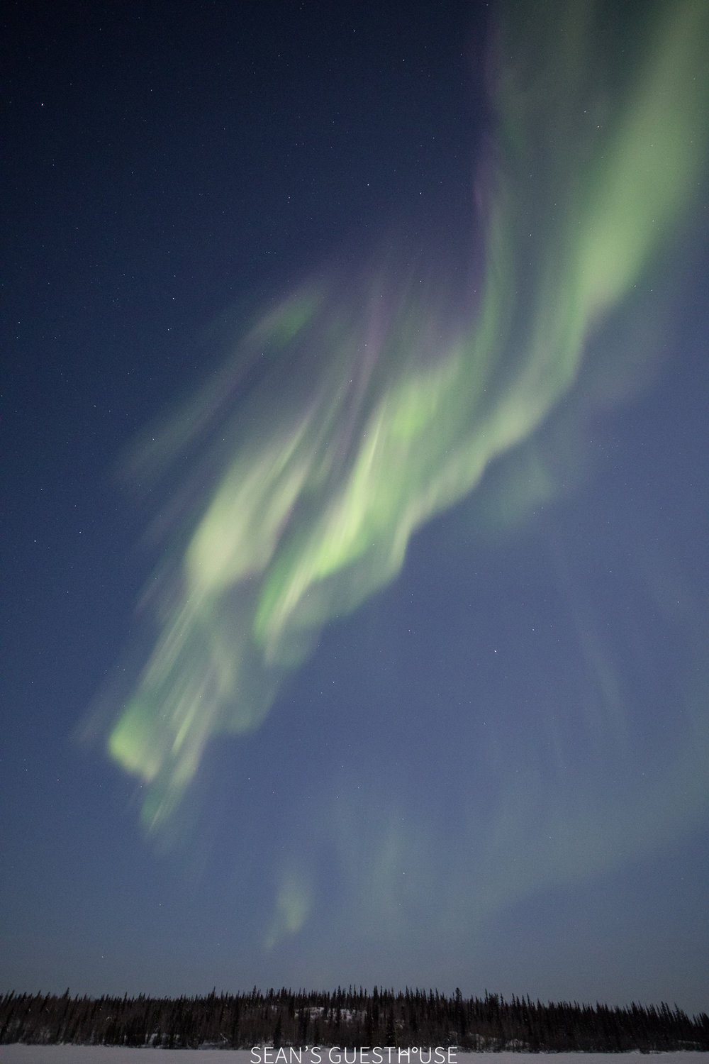Yellowknife Aurora Tour - Aurora Guide - 2.jpg