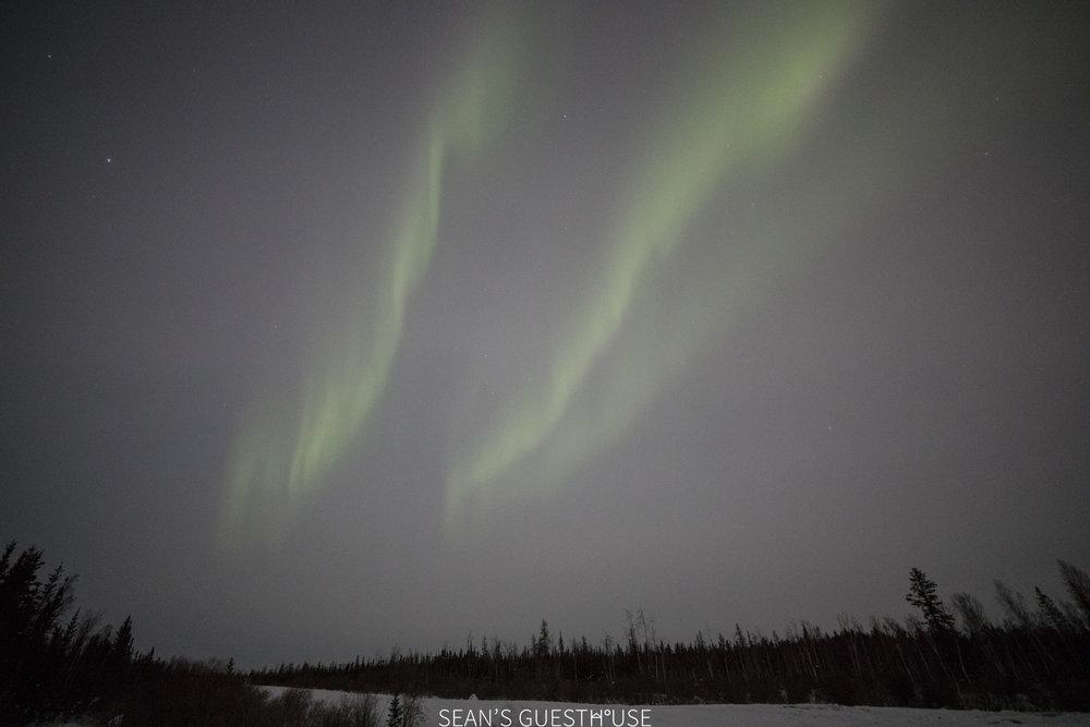 Yellowknife Aurora Guide - Sean Norman - 1.jpg