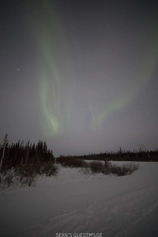 Yellowknife Aurora Guide - Sean Norman - 2.jpg