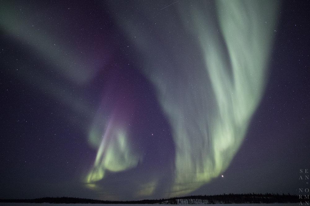 Yellowknife Aurora Hunting - 1.jpg