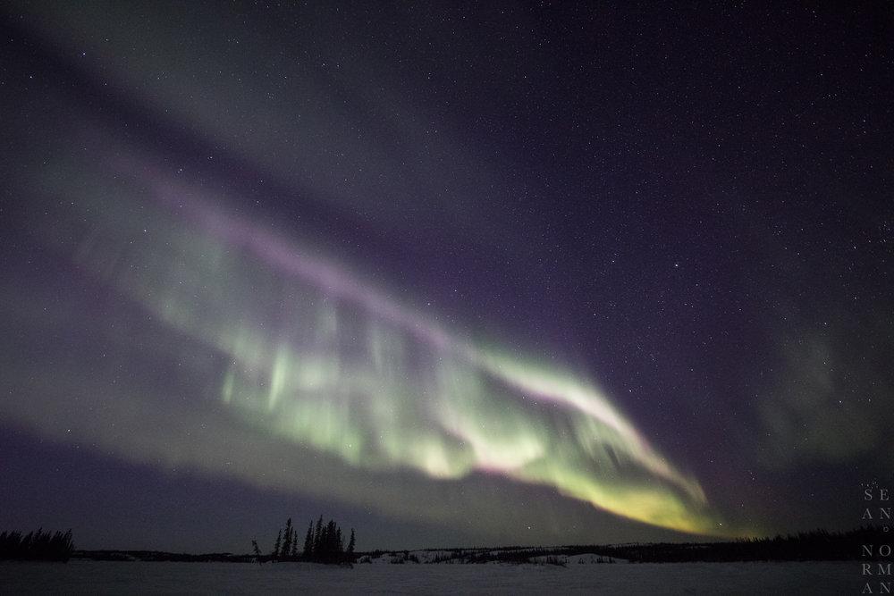 Yellowknife Aurora Hunting - 5.jpg