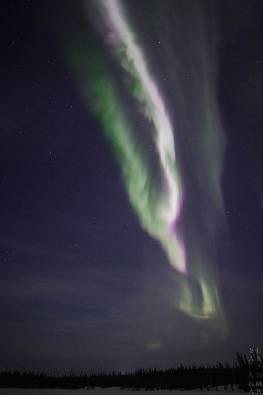 Yellowknife Aurora Tour with Sean Norman - 7.jpg