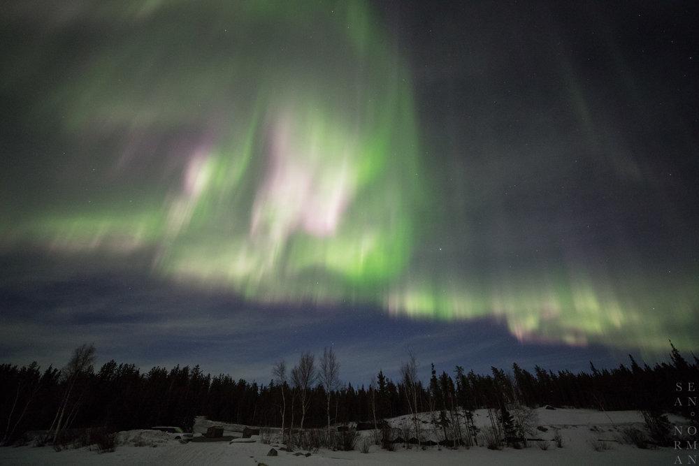 Yellowknife Aurora Chasing Tour - Sean Norman - 7.jpg
