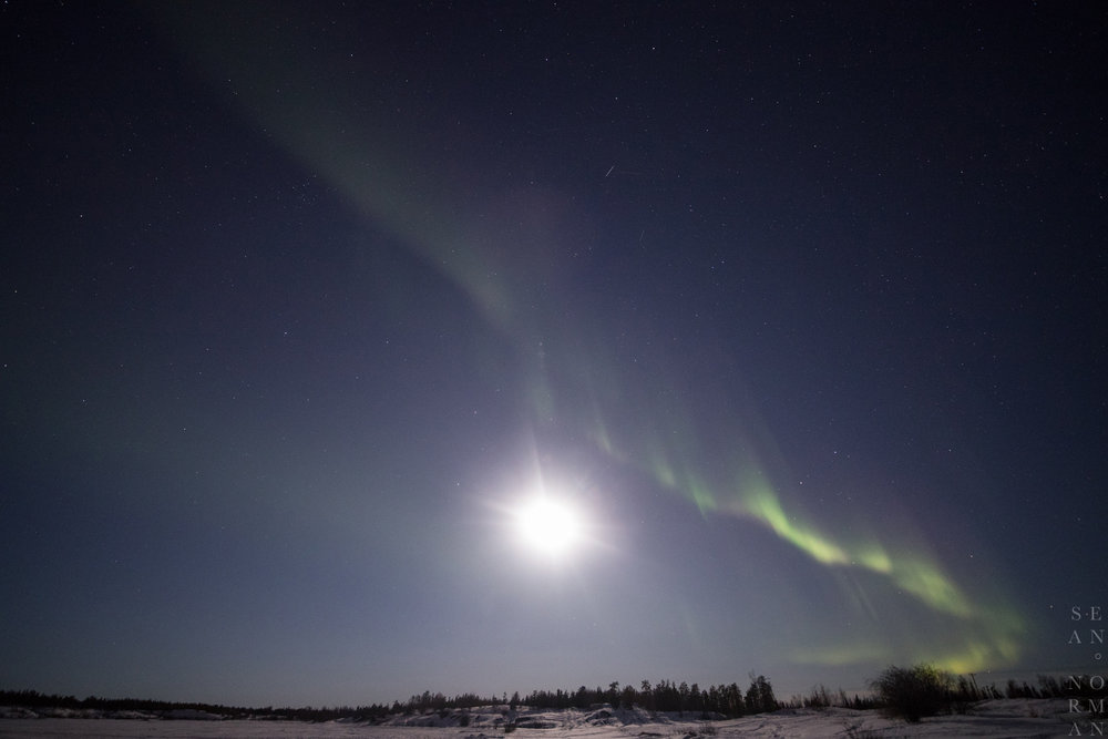 Yellowknife Aurora Borealis - 4.jpg