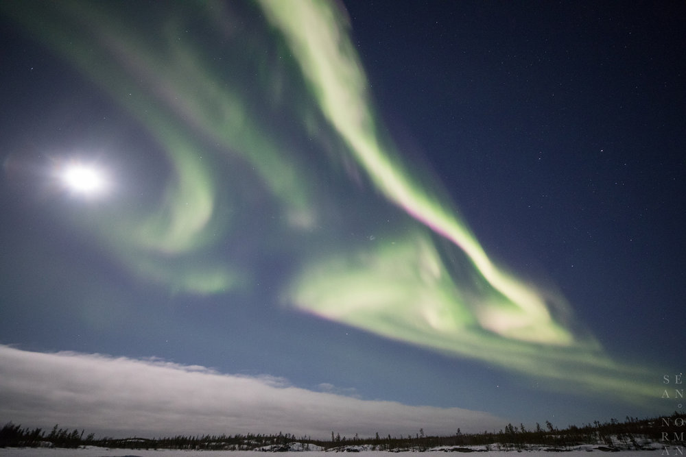 Yellowknife Aurora Tour - 2.jpg