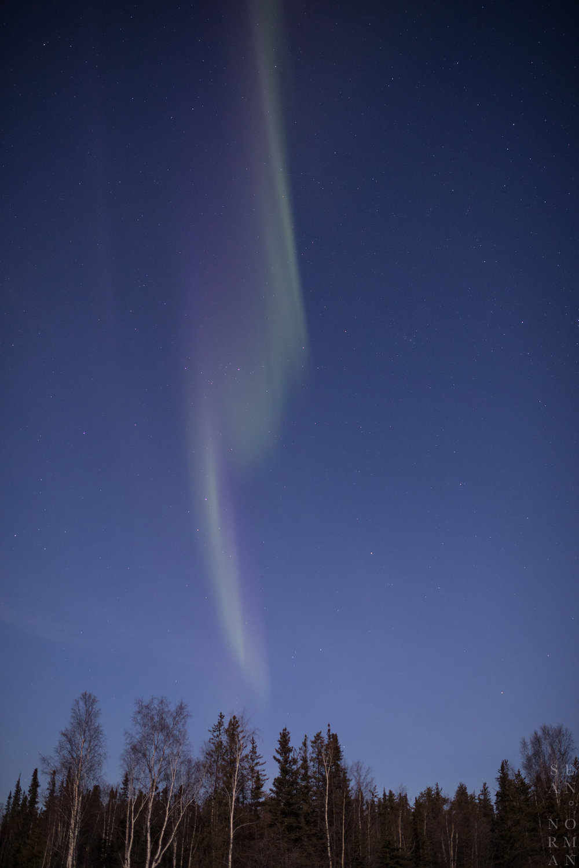 Sean Norman Aurora Guide in Yellowknife - 2.jpg