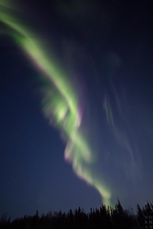 Yellowknife Aurora Chaser - 5.jpg