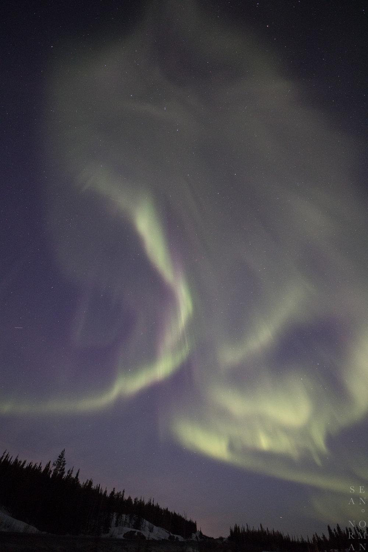 Yellowknife Aurora Tour Guide - 7.jpg