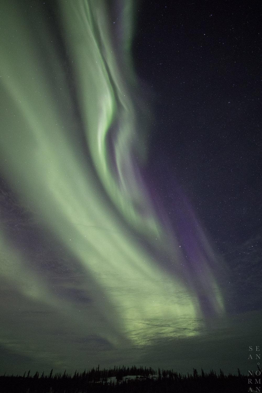 Sean Norman Yellowknife Aurora Tour - 3.jpg