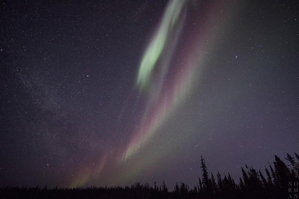April Aurora Yellowknife - Sean Norman - 3.jpg