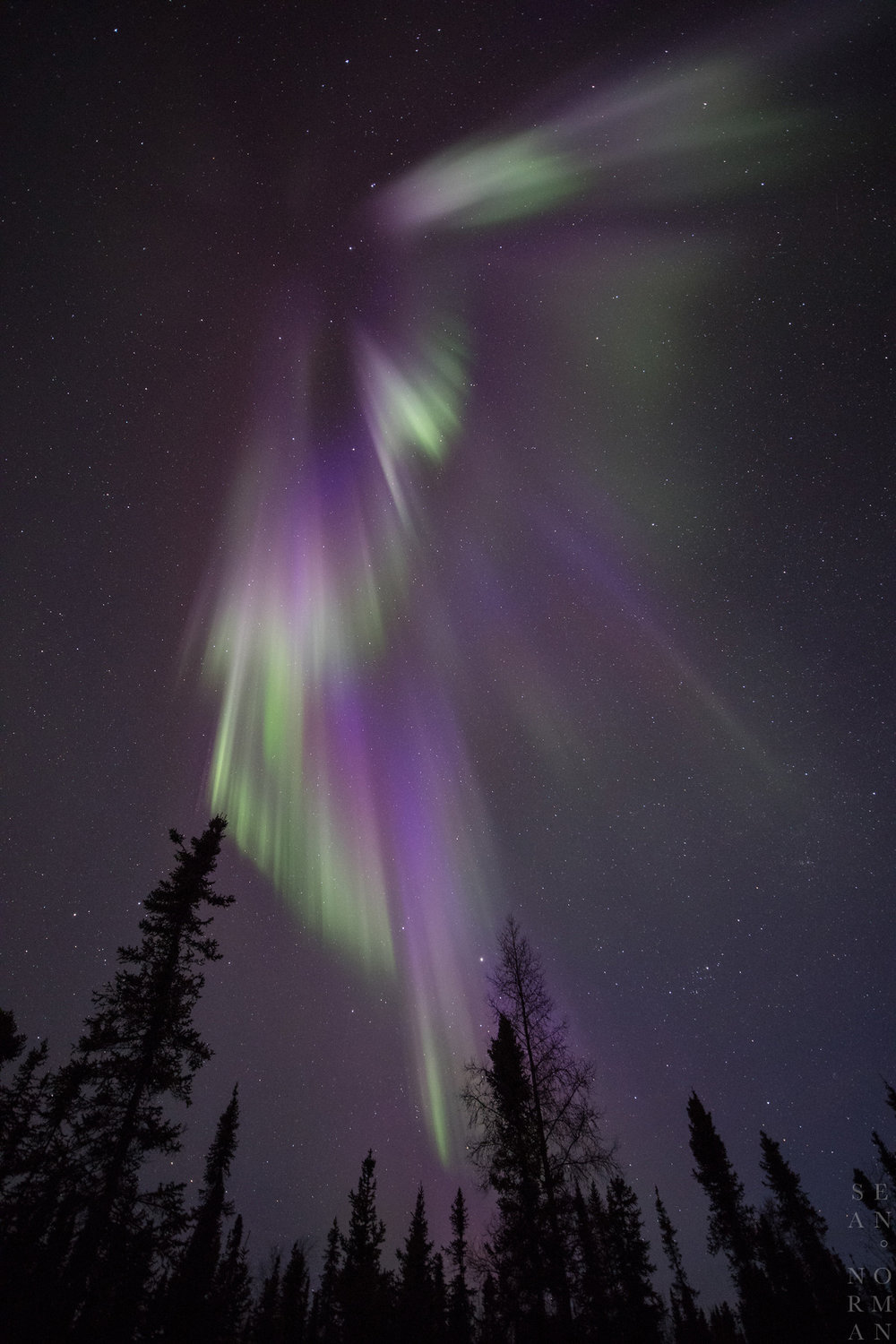 Yellowknife Aurora Tour - Sean Norman Blog - 2.jpg
