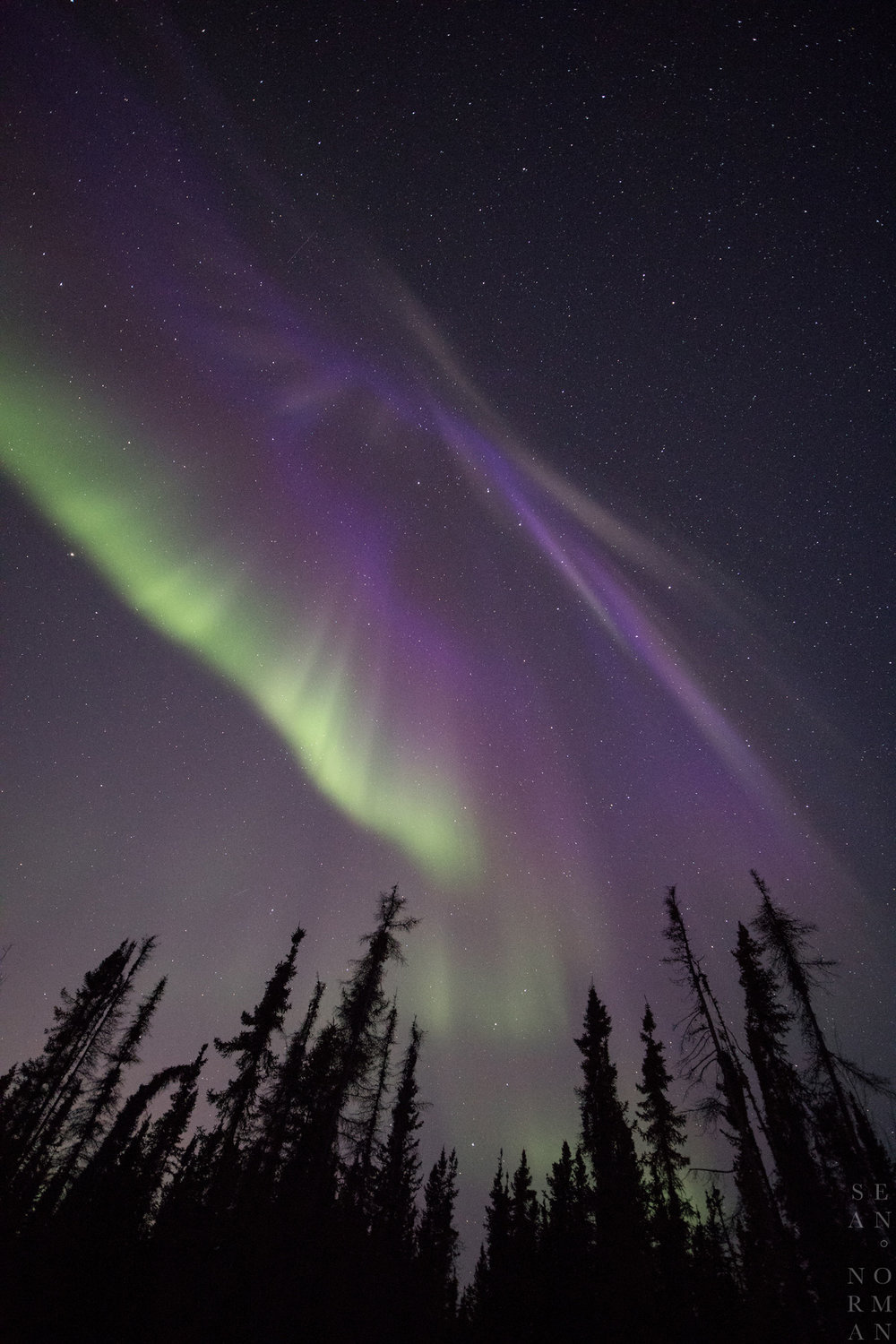 Yellowknife Aurora Tour - Sean Norman Blog - 6.jpg