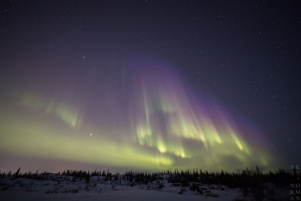 Yellowknife Aurora Tour - Sean Norman Blog - 8.jpg
