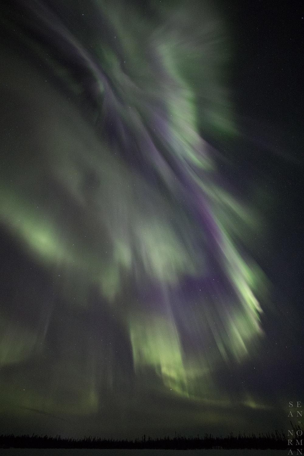 Yellowknife Aurora Hunting Tour - 8.jpg