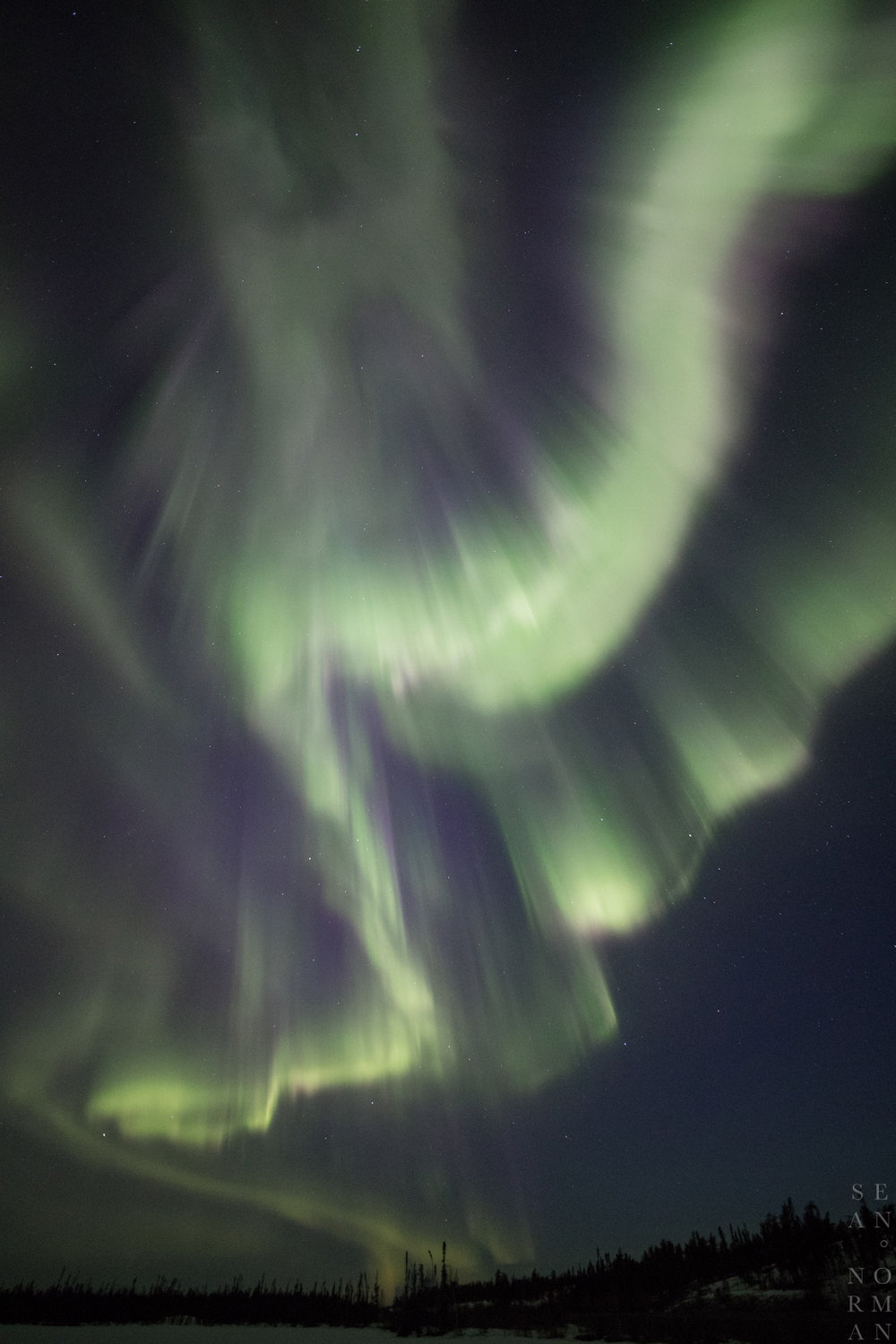 Yellowknife Aurora Hunting Tour - 9.jpg