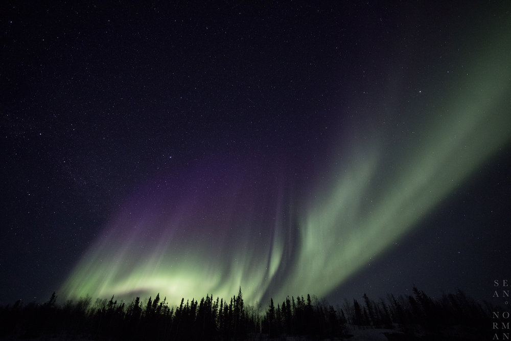 Yellowknife Aurora Tour - 5.jpg