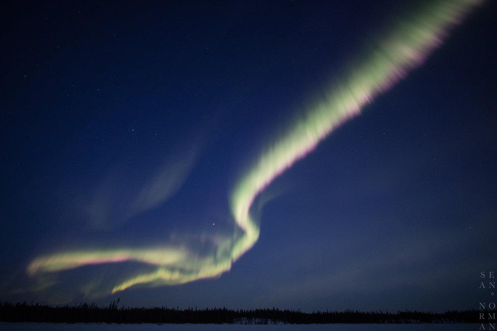 Yellowknife Aurora Hunting Tour - 3.jpg