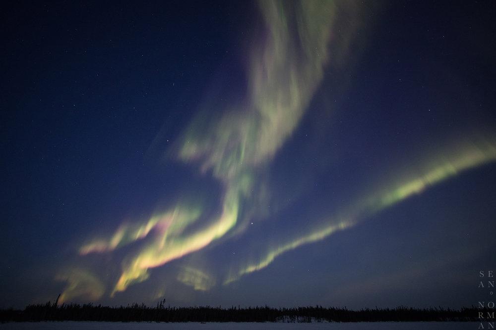 Yellowknife Aurora Hunting Tour - 6.jpg