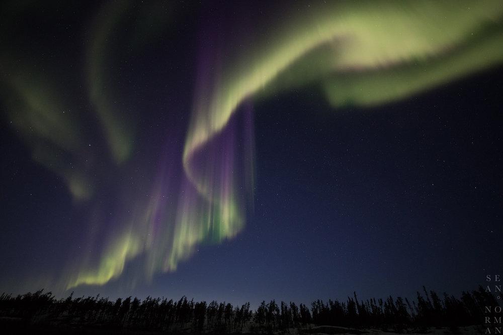 Yellowknife Aurora Hunting Tour - 11.jpg