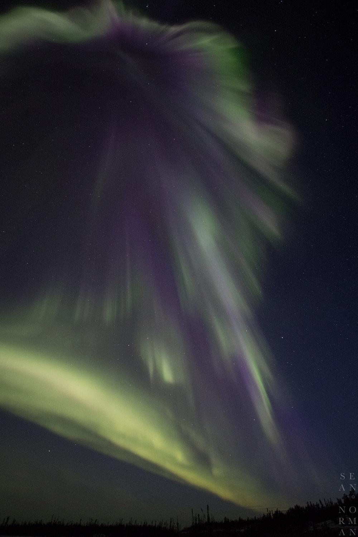 Yellowknife Aurora Hunting Tour - 12.jpg