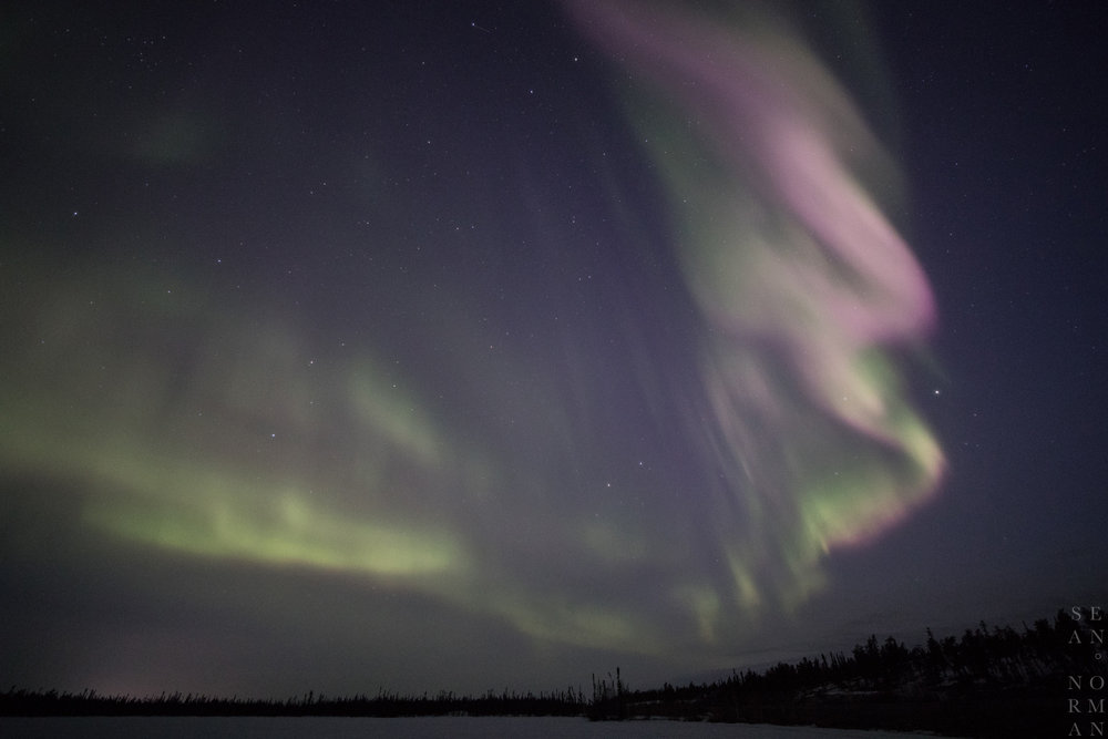 April Aurora Hunting Tour in Yellowknife - 3.jpg