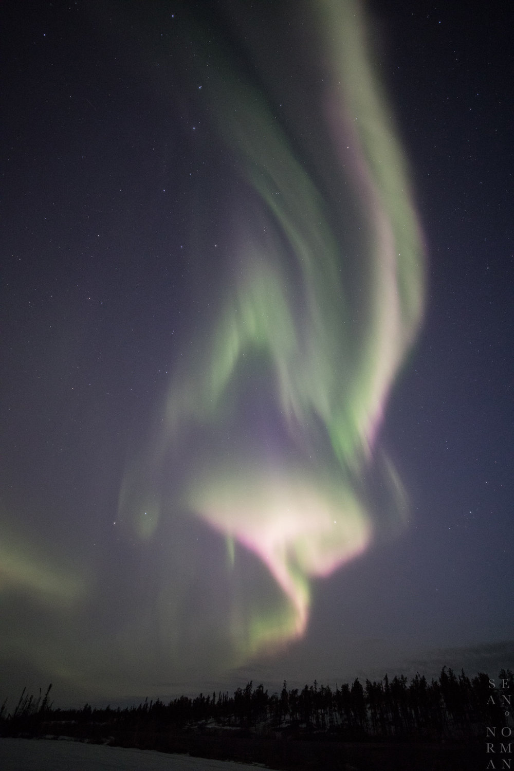 April Aurora Hunting Tour in Yellowknife - 4.jpg