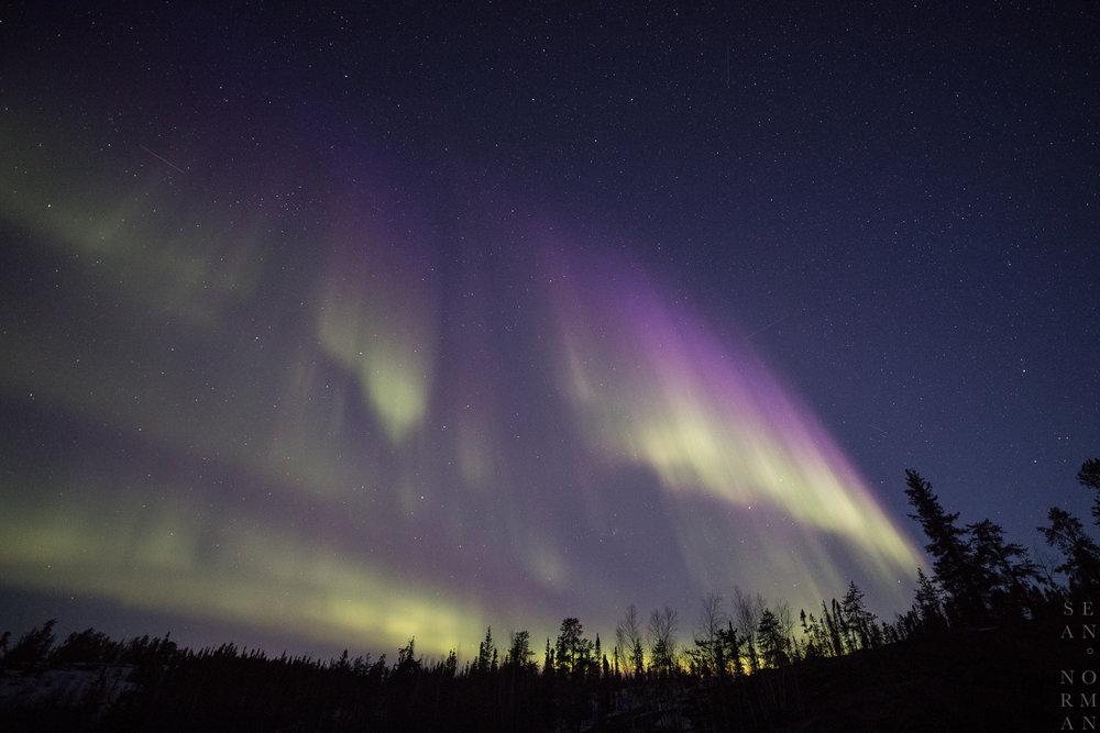 Yellowknife Aurora Chasing Tour - 7.jpg
