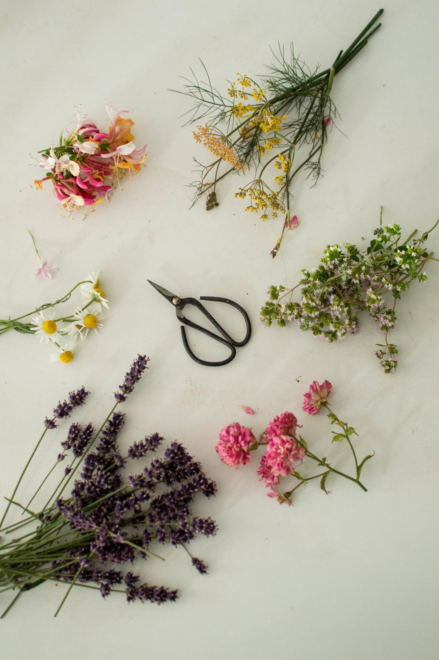 Wild Rose & Herb Smudge Sticks — little birdie