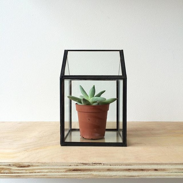 Alfies_Studio_-_Outdoors-In_-_Glass_House_Terrarium.jpg