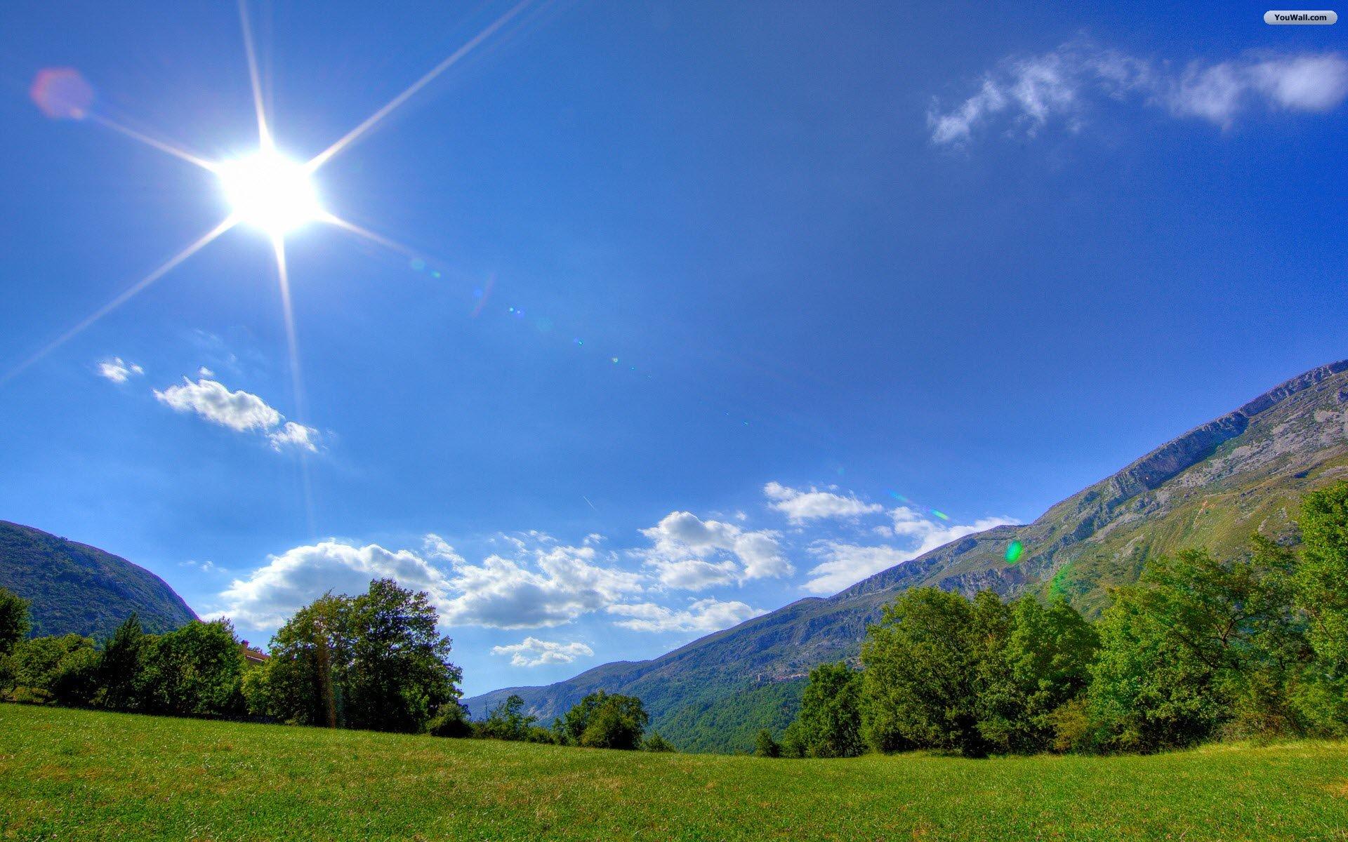 sunny-days1
