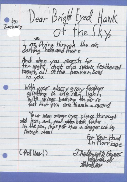 Dear Bright Eyed Hawk by Zachary F.