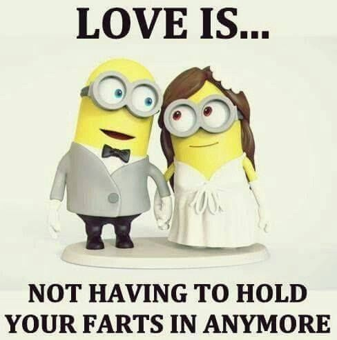 funny-quotes-love-is-not-having-to-hold-your-farts-in-anymore-love-love-quotes-funny-quotes-q.jpg