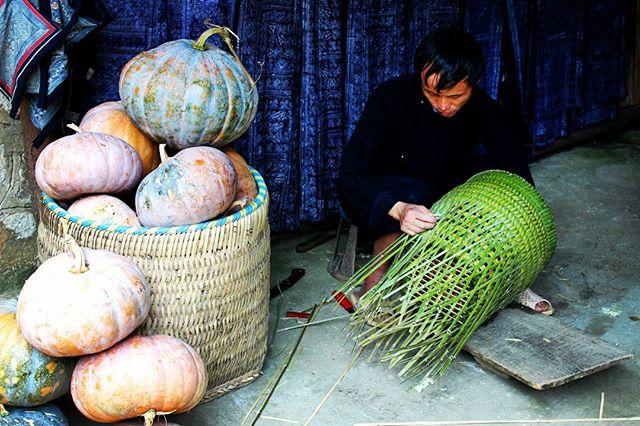 Pumpkin season is upon us . . . . #pumpkin #harvest #basket #craftsman #making #indigo #sapa #vietnam #village #handmade #travel