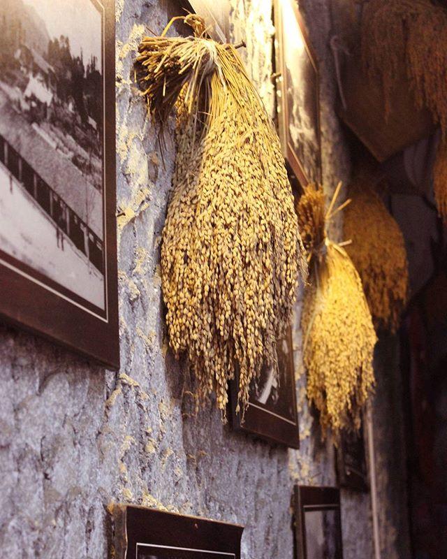 Rural Vietnam . . .  #wall #produce #grain #rice #winter #village #home #highlands #rural #Vietnam #travel #dim #light