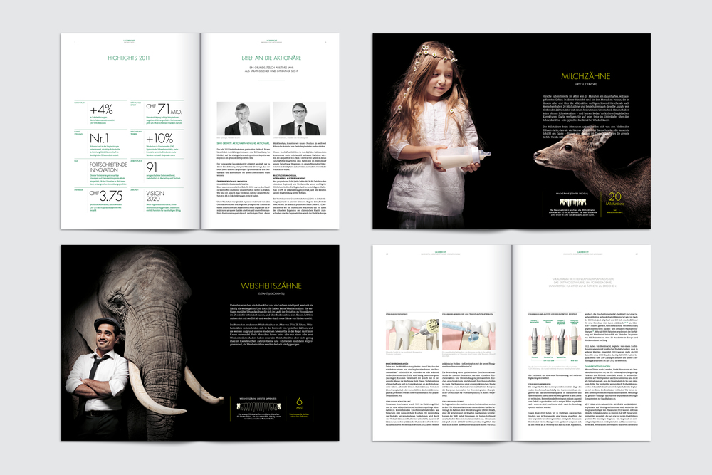 Straumann Geschäftsberichte 2006 bis 2013