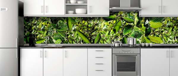 Glass Print Kitchen Splash Back