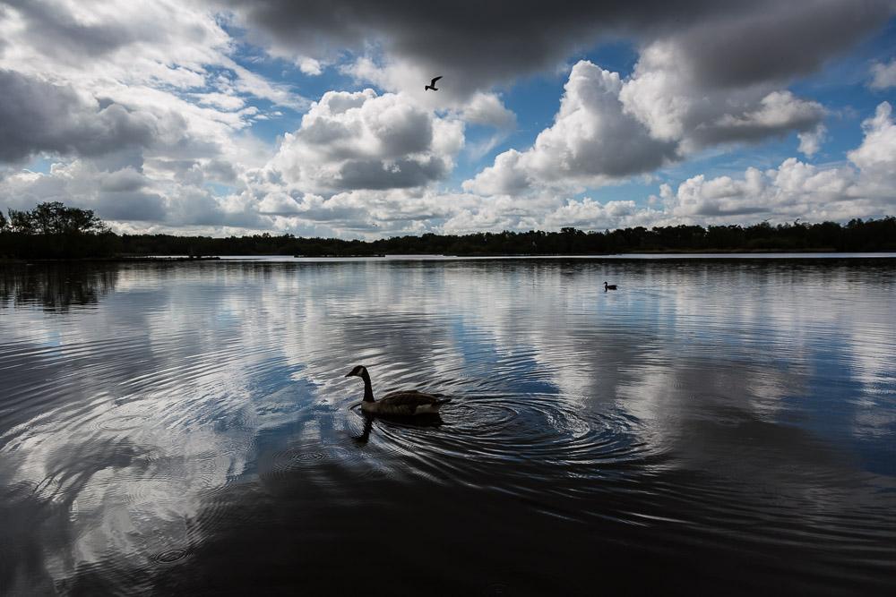 fleet-pond-elvetham-heath-hampshire-wedding-photographer-8.jpg