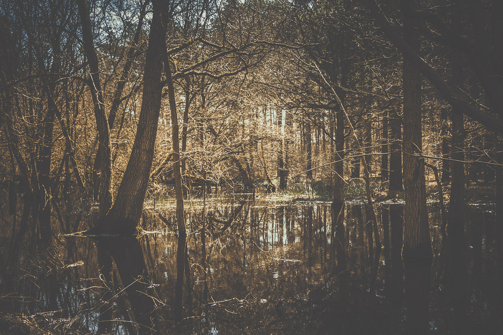fleet-pond-elvetham-heath-hampshire-wedding-photographer-12.jpg