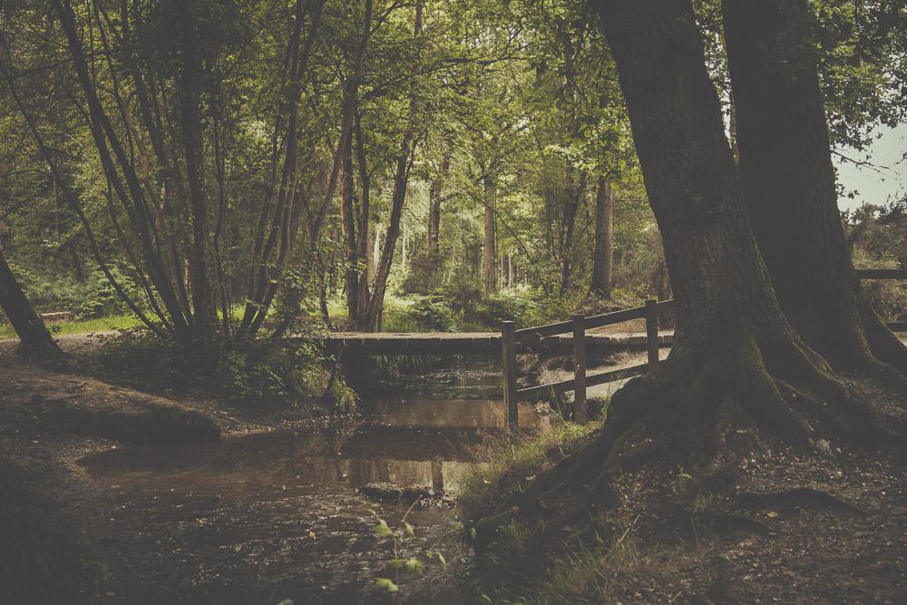fleet-pond-elvetham-heath-hampshire-wedding-photographer-26.jpg