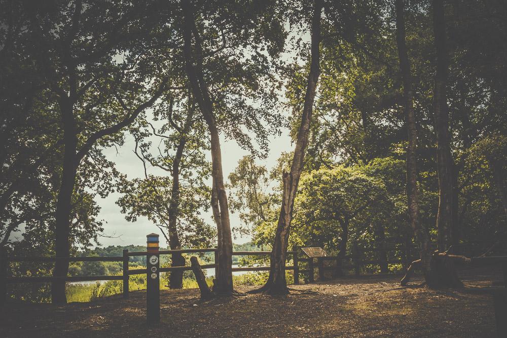 fleet-pond-elvetham-heath-hampshire-wedding-photographer-28.jpg
