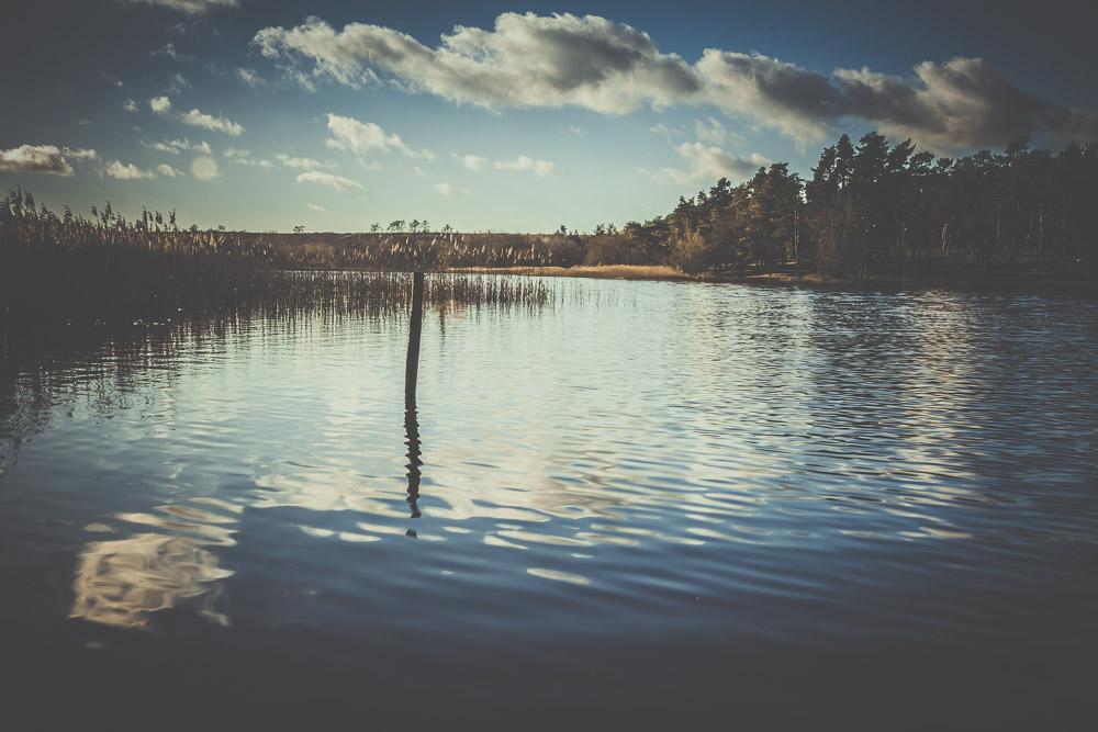 frensham-liitle-pond-and-great-pond-surrey-hampshire-wedding-photographer-6.jpg